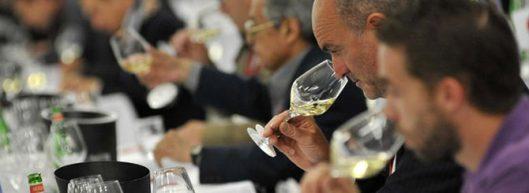 wine-judging-panel-tasting